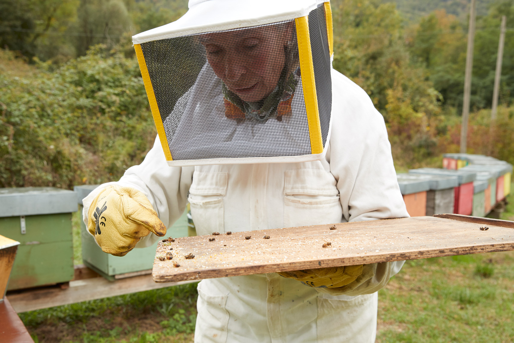 Autentico: Franca, The Bee Whisperer